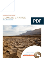 Perspective Paper Climate Change