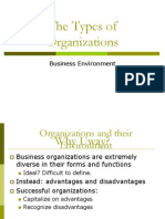 BE_Types of org_b
