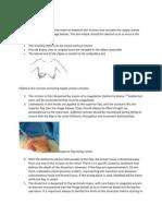 Simple Mastectomy