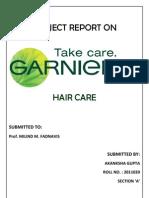 Garnier Project Report