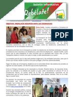 CMFnum 47 Objetivo Andalucia Insumisa Ante Los Desahucios