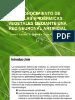 Larcher Red Neuronal