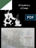 El+Cachorro+y+El+Conejo