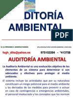 8 AUDITORÍA AMBIENTAL