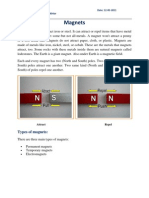 Magnet Book Report