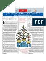 ¿QUÉ TIPO DE AGRICULTURA ES IDÓNEA a fin de impulsar el desarrollo del país?