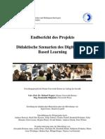 2008 Wagner Mitgutsch Endbericht Dsdgbl
