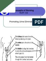 Promoting Urine Elimination+Promoting Bowel Elimination+Promoting Proper Nutrition