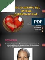 Envejecimiento Del Sistema Cardiovascular Lily