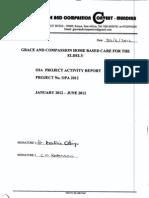 Ga Cc Report Jan Jun 2012