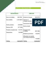 Fondation GoodPlanet - Bilan Financier 2008