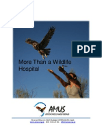 More Than a Wildlife Hospital