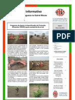 Boletim nº 9 da Cooperação Portuguesa na Guiné-Bissau Março-Junho 2012