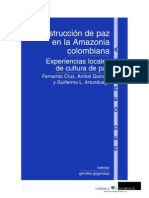 Construcción de paz en la Amazonia colombiana.  Experiencias locales de cultura de paz