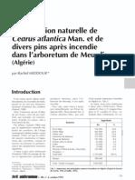 Meddour_ 1992_Regeneration naturelle de Cedrus atlantica Man. et de divers pins après incendie dans l'arboretum de Meurdja (Algérie)