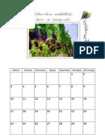 calendari12.13_dibuixos