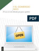 La Pyme y El Comercio Electronico Web