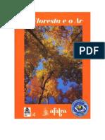 A Floresta e o Ar!!!