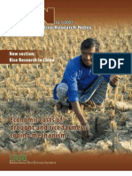 International Rice Research Notes Vol. 32 No. 1