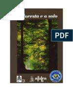 A Floresta e o Solo!!!