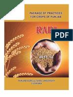 Package Rabi 2011-12