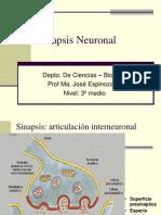 Unidad 1- Sinapsis Neuronal-3º - 2012