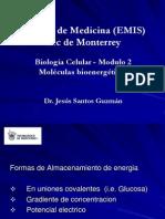 Biologia Celular Mod2 3 Bioeneargetica