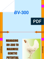 BV 300 Management