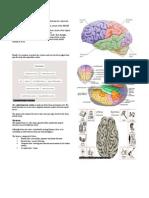 Neurology Short Notes