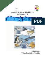 PROIECT animale polare