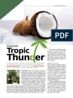 Cococin - Tropic Thunder