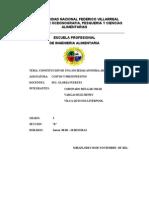 Documento de Constitucion de Odapsaa (1)