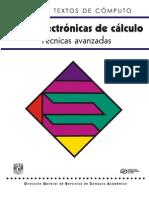 Manual de Excel -Técnicas Avanzadas
