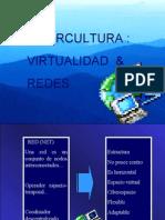Cibertcultura Virtualidad y Redes