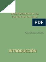 Bioestratigrafía_Fm Calapuja