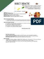 Proiecte Didactic-Ab. Practice is Gr.1