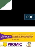 Sustentacion_CorpLindley