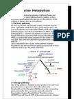 Genetics Lecture #2 , Ahmad Shboul