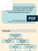Y Chromosome Ancestry in Alagoas Population
