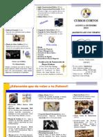 Mini Brochure AGO a DIC 2012
