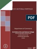 multisectoral portfolio