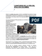 Bufalo 7  ASPECTOS SANITARIOS DE LA CRÍA DEL BÚFALO