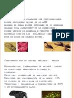 arqueobacterias-090626011711-phpapp02
