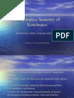 Comparative Anatomy of Vertebrates Presentation Lect 1
