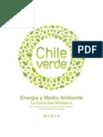 Libro Chile Verde 2010