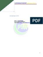 Final Internship Report Summer