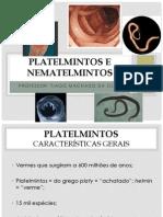 Apresentação 1 - Platelmintos e Nematelmintos