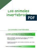 invertebrados-100119160305-phpapp02