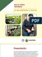 Practicas Plantulas Humus