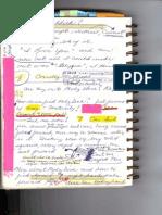 Journal 1 - 11.09.08 p4 -0001